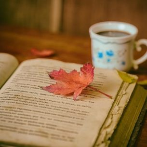 leaves, books, color
